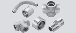 Hastelloy C22 / C276 / B2 / B3  Forged Pipe Fittings Manufacturer & Supplier